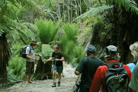 Education on the Trail