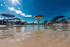 Giant Mushroom Fountain In The Pool