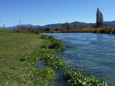 River View from the Park