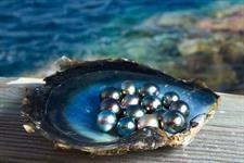 e - Tahiti Pearl Beach pearl Tahiti Pearl Beach Resort
