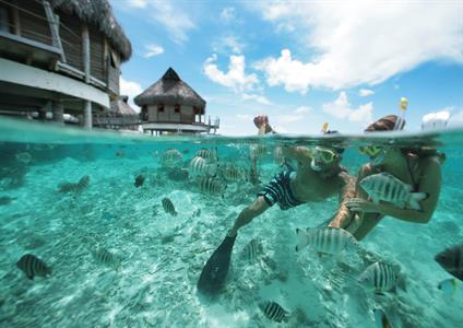 d - Tikehau - Tikehau Pearl Beach Resort - snorkel Tikehau Pearl Beach Resort