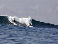 Rip Curl Surfing Rip Curl Surfing