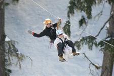 Ziptrek Ecotours Tandem Winter Ziptrek Ecotours