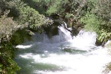 Kaituna Scenery RiverRats