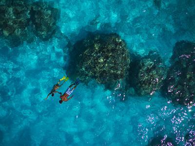 d - IC Le Moana Bora Bora - snorkeling Intercontinental Le Moana Bora Bora