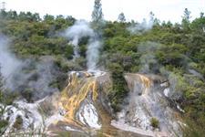 Set amongst the native bush New Zealand River Jet