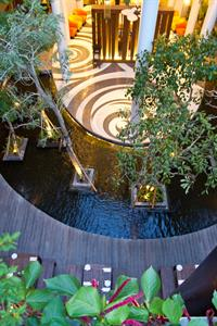 Fish pond Swiss-Belhotel Rainforest