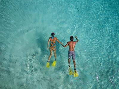 d - IC Resort & Thalasso Spa Bora Bora snorkeling