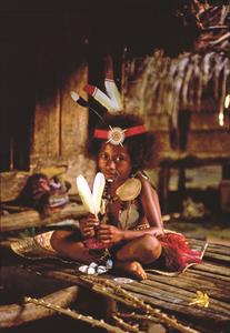 Village Huts Papua New Guinea-158-DK
