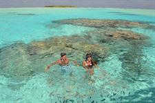 Feeding Fish Air Rarotonga