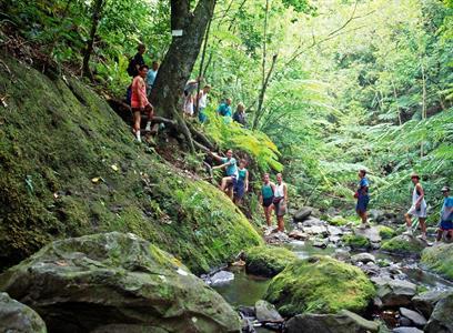 Pa's Nature Walk Pa's Treks