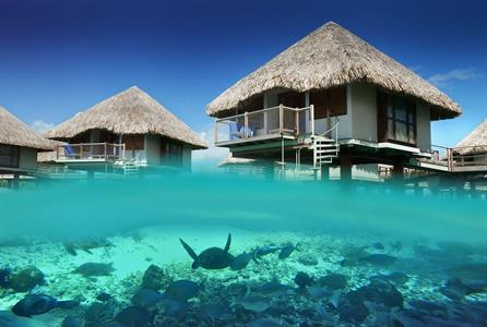 d - Le Meridien Bora Bora - Snorkeling2 Le Meridien Bora Bora