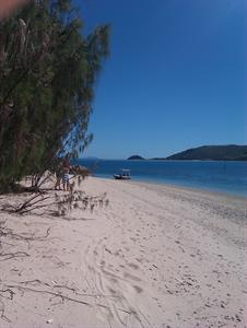 Steens Beach looking at Hayman Island