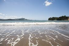 Fantastic Coromandel Beaches
