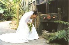 Cafe & Functions Wedding couple