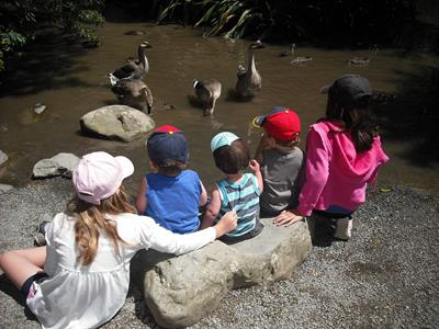 Explore Staglands - Kids activities feeding geese