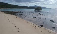 Tide is out at Nellie Bay - Northern Explorer