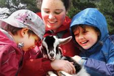 Explore Staglands - Deer park & croft hug a goat