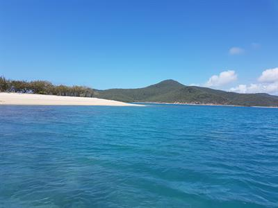 Looking back at nellie Bay from Saddleback Island