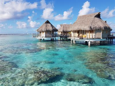 Tikehau Pearl Beach Resort - Rooms - Overwater Bungalow