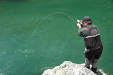 05