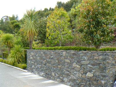 Katikati Stone retaining wall