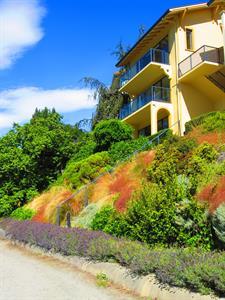 Picture 639 Villa del Lago