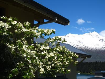 Spring: Tree, Roofs, Snow on Cecil Peak Villa del Lago