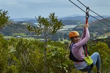 Ziplining on Waiheke-Island, Auckland