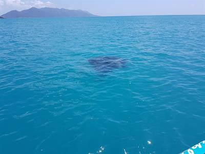 20160912_114039