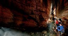 Te Anau Glowworm Caves Real Journeys