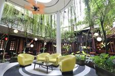 Lounge Area Swiss-Belhotel Rainforest