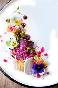 Foraged Blackberry Parfait, Blackberry Gel, Almond Crumble, Hibiscus Granita, Treetops Estate Manuka