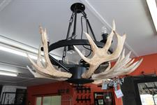custom antler chandelier round