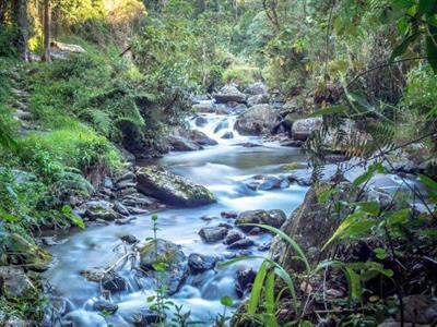 River PNG Trekking Adventures - Kokoda