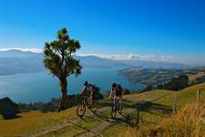 Otago Peninsula Dunedin NZ