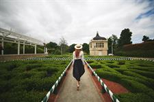 Hamilton Gardens - image by Jarrad Seng