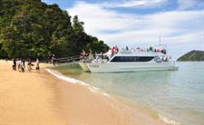 Cruising and Exploring in Abel Tasman National Park
