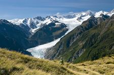 Fox Glacier 2