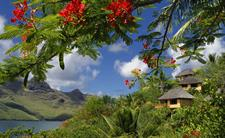 a - Keikahanui Nuka Hiva Pearl Lodge - bungalows o Keikahanui Nuka Hiva Pearl Lodge