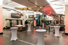 Auckland Museum - Origins Gallery Auckland Museum – Tamaki Paenga Hira