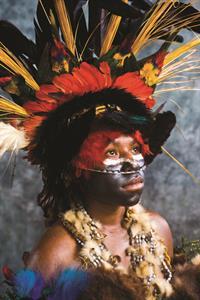 Village Huts Papua New Guinea-260-DK