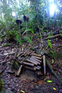From The War PNG Trekking Adventures - Kokoda