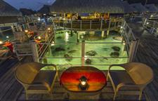 c - Hilton Moorea Lagoon Resort & Spa - Restaurant Hilton Moorea Lagoon Resort & Spa