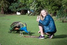 Eva Patching Staglands Wildlife Reserve and Café
