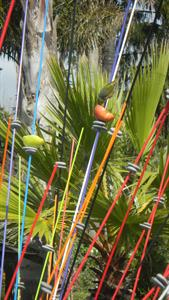 Windsticks- attract the birds