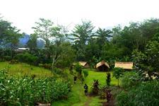 Village Huts PNG Trekking Adventures - Kokoda