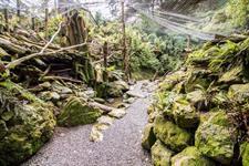 Lance Mosher Staglands Wildlife Reserve and Café