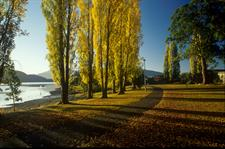 DH Te Anau- Autumn in Lake Te Anau