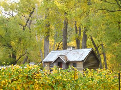 Autumn - Arrowtown 4 Villa del Lago